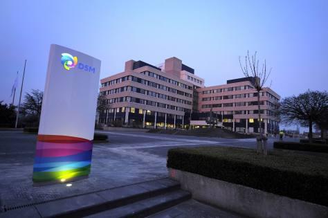 Dsm_headquarters_heerlen_netherlands_2011.jpg